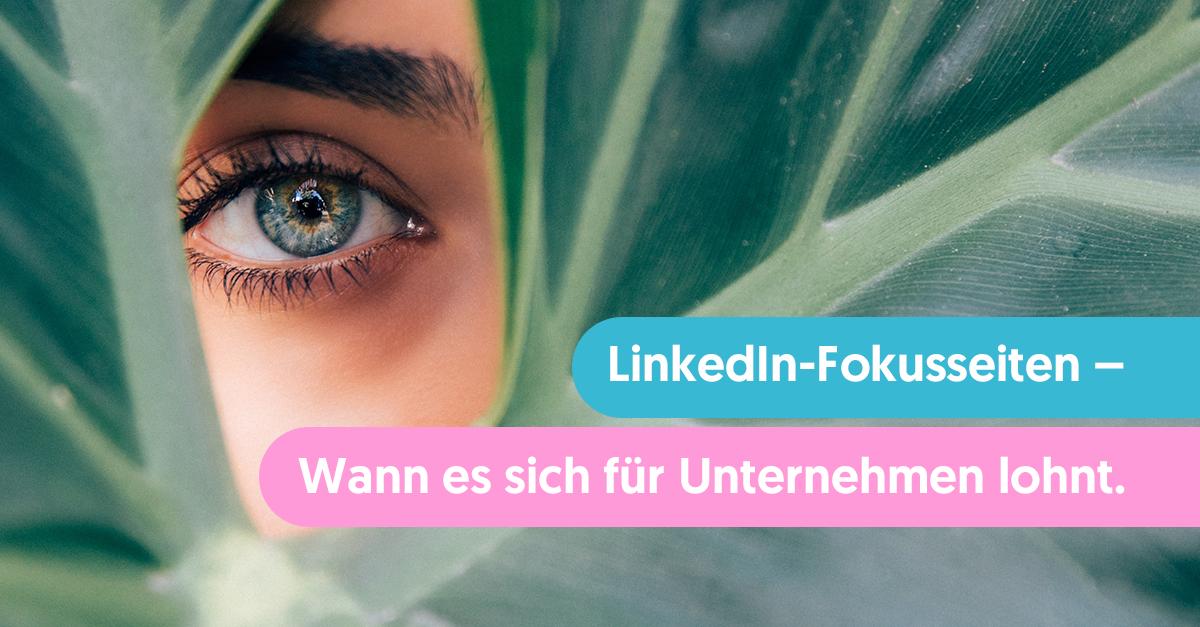 LinkedIn-Fokusseiten für Unternehmen – Wann sie sich lohnen, wann nicht
